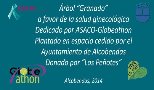 Placa Granado cancer ginecologico ovario ASACO 2014