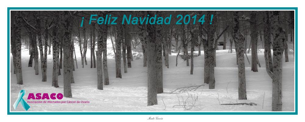 ASACO Navidad 2014