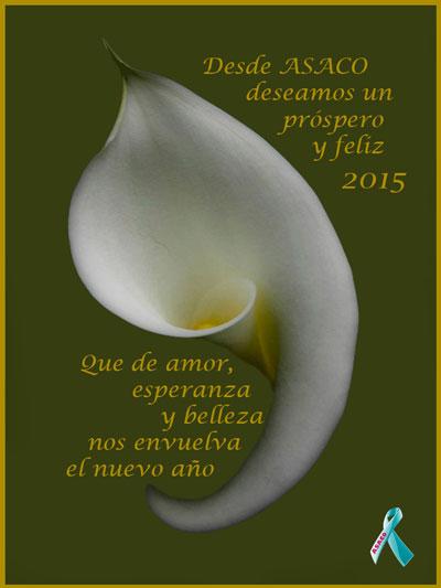 ¡¡Feliz y Próspero año 2015!!