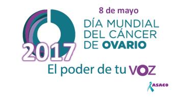 Banner web DMCO 2017