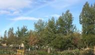 El arco iris sobre los huertos de Alcobendas