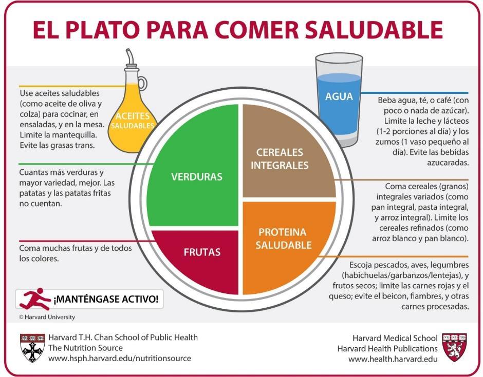 introduccion sobre la alimentacion saludable
